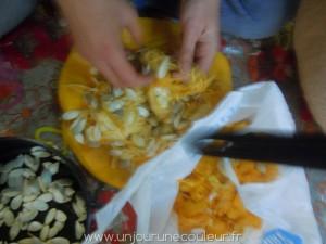 Tri des pépins de citrouille pour faire des pépins grillés